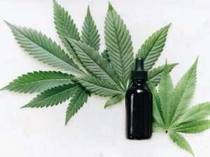 Grüne-Cannabisblätter-mit-CBD-Öl-auf-weißem-Hintergrund-hilft-gegen-Angst